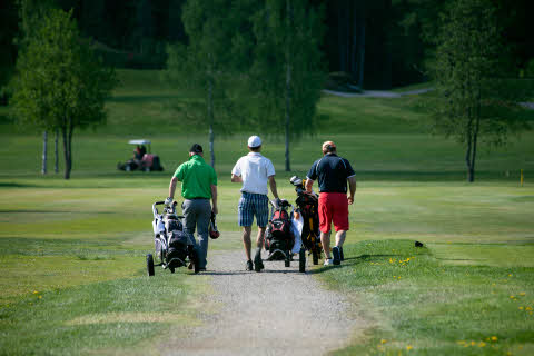 Scandic_Finland_GolfFriendsOpen2016_playing.jpg