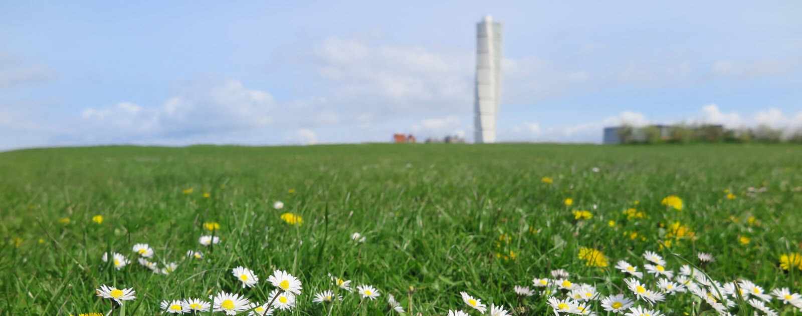 Sweden, Malmo. Field with Turning Torso in the background.
